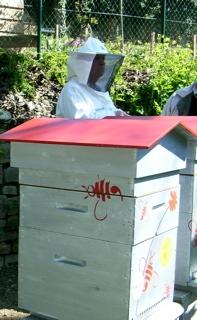 medium_abeilles.2.jpg