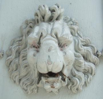 medium_lion2.jpg