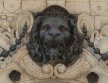 medium_lion_1.jpg