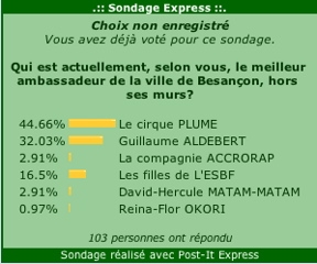 medium_sondage_ambass.2.jpg