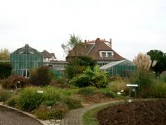 jardin botanique.jpg